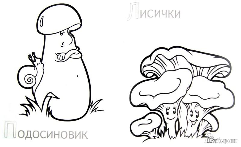 Иллюстрация 1 из 15 для Забавные грибы   Лабиринт - книги. Источник: Лабиринт