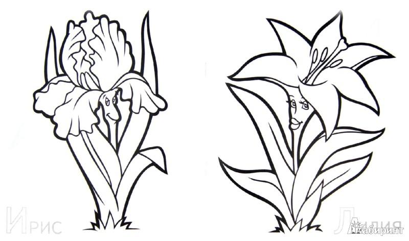 Иллюстрация 1 из 12 для Забавные садовые цветы | Лабиринт - книги. Источник: Лабиринт