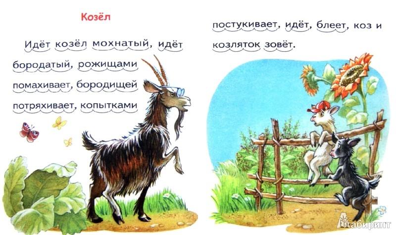 Иллюстрация 1 из 9 для Петушок с семьёй - Константин Ушинский | Лабиринт - книги. Источник: Лабиринт