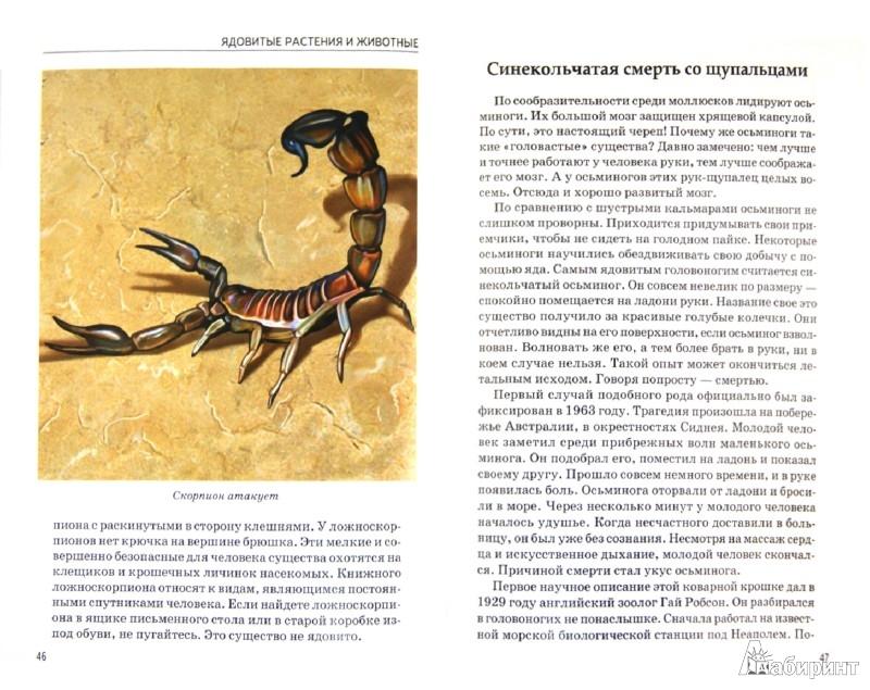 Иллюстрация 1 из 4 для Ядовитые растения и животные - Сергей Афонькин | Лабиринт - книги. Источник: Лабиринт