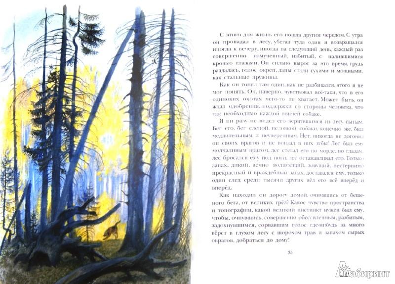 Иллюстрация 1 из 46 для Арктур - гончий пёс - Юрий Казаков | Лабиринт - книги. Источник: Лабиринт
