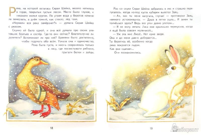 Иллюстрация 1 из 18 для Серая Шейка - Дмитрий Мамин-Сибиряк   Лабиринт - книги. Источник: Лабиринт