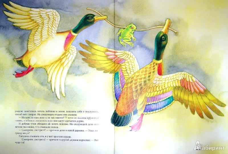 Иллюстрация 1 из 14 для Лягушка-путешественница - Всеволод Гаршин | Лабиринт - книги. Источник: Лабиринт