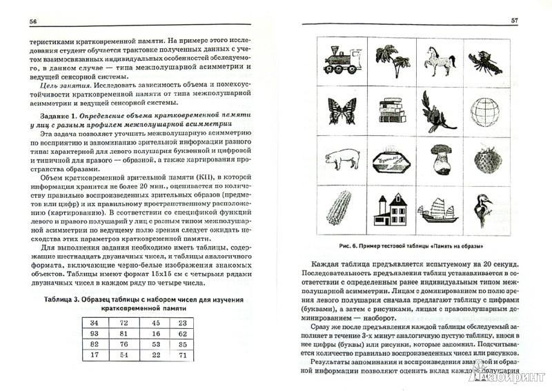 Иллюстрация 1 из 6 для Функциональная межполушарная асимметрия мозга человека и психические процессы - Реброва, Чернышева | Лабиринт - книги. Источник: Лабиринт