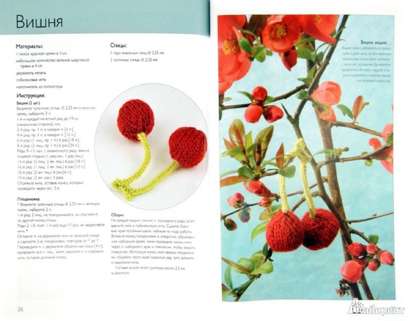 Иллюстрация 1 из 24 для Вязаные фрукты. 20 проектов - Сьюзи Джонс | Лабиринт - книги. Источник: Лабиринт