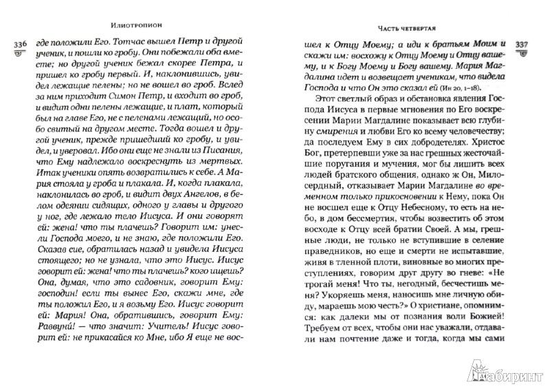 Иллюстрация 1 из 11 для Илиотропион - Святитель Иоанн Максимович (Тобольский) | Лабиринт - книги. Источник: Лабиринт