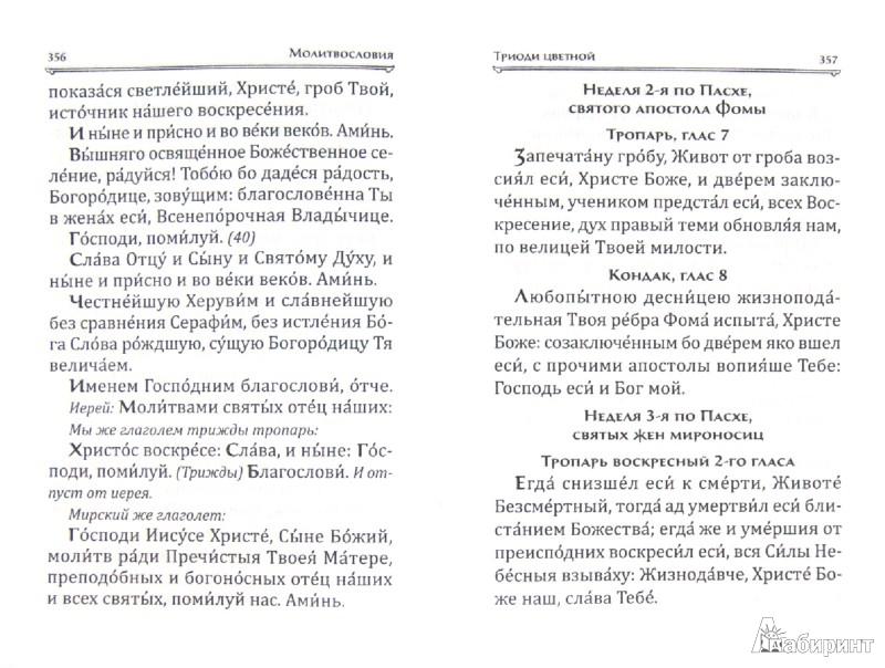 Иллюстрация 1 из 2 для Большой православный молитвослов и Псалтирь | Лабиринт - книги. Источник: Лабиринт