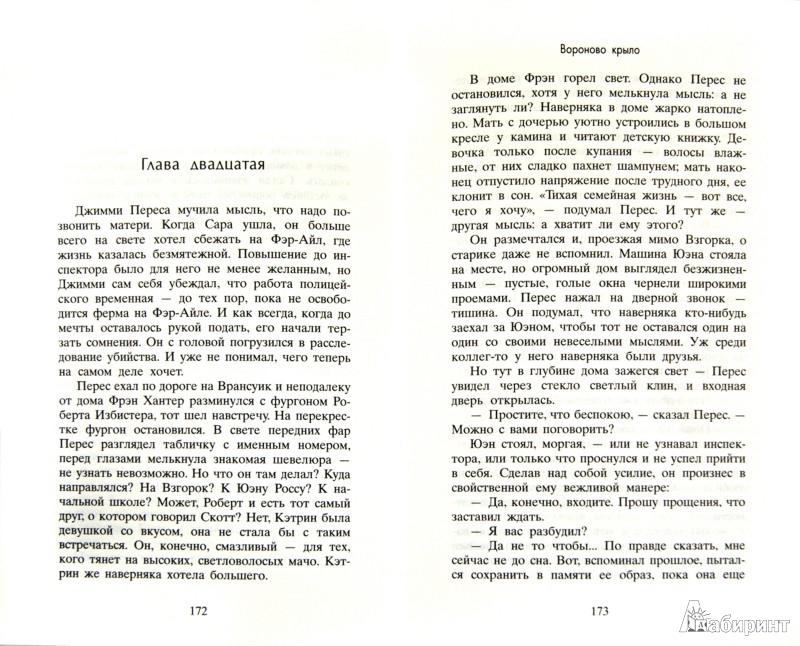Иллюстрация 1 из 9 для Вороново крыло - Энн Кливз | Лабиринт - книги. Источник: Лабиринт