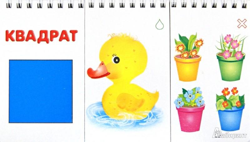 Иллюстрация 1 из 11 для Счет, цвет, форма. Развивающее лото | Лабиринт - книги. Источник: Лабиринт