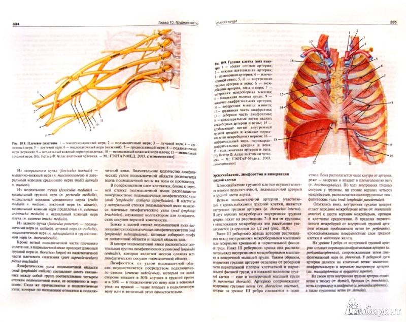 Иллюстрация 1 из 4 для Топографическая анатомия и оперативная хирургия: учебник - Сергиенко, Петросян | Лабиринт - книги. Источник: Лабиринт