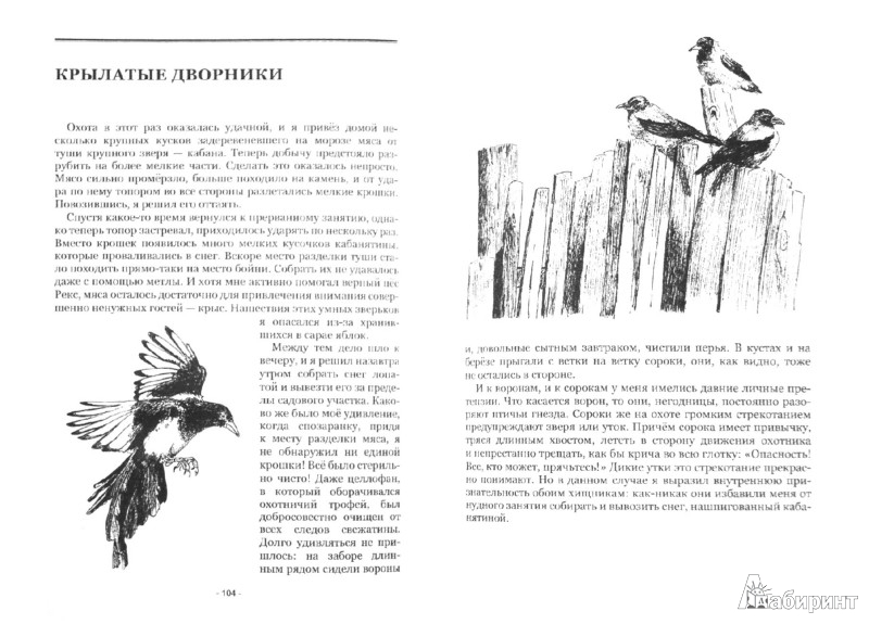 Иллюстрация 1 из 16 для Смерть короля или Лев не прыгнул. Рассказы об усатых, пернатых и хвостатых - Александр Гуров | Лабиринт - книги. Источник: Лабиринт