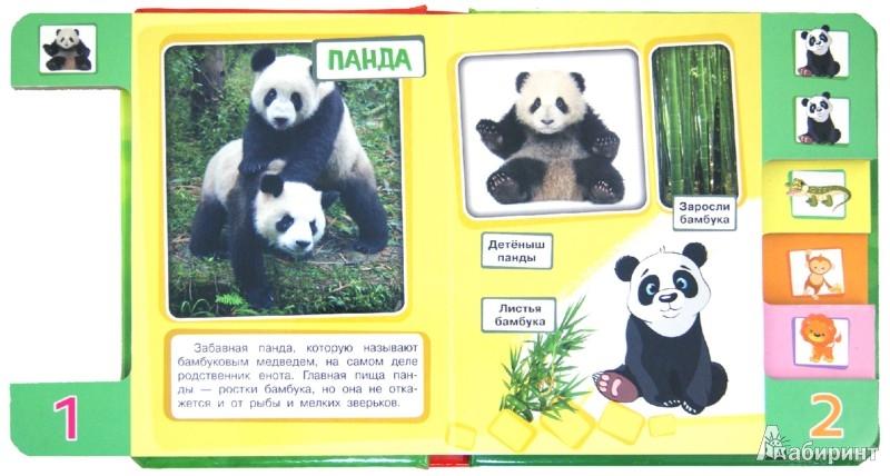 Иллюстрация 1 из 7 для Веселый зоопарк | Лабиринт - книги. Источник: Лабиринт