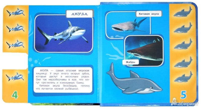 Иллюстрация 1 из 8 для Кто в море живет? Листай странички-учи цифры! Узнавай! Учись! Играй! | Лабиринт - книги. Источник: Лабиринт