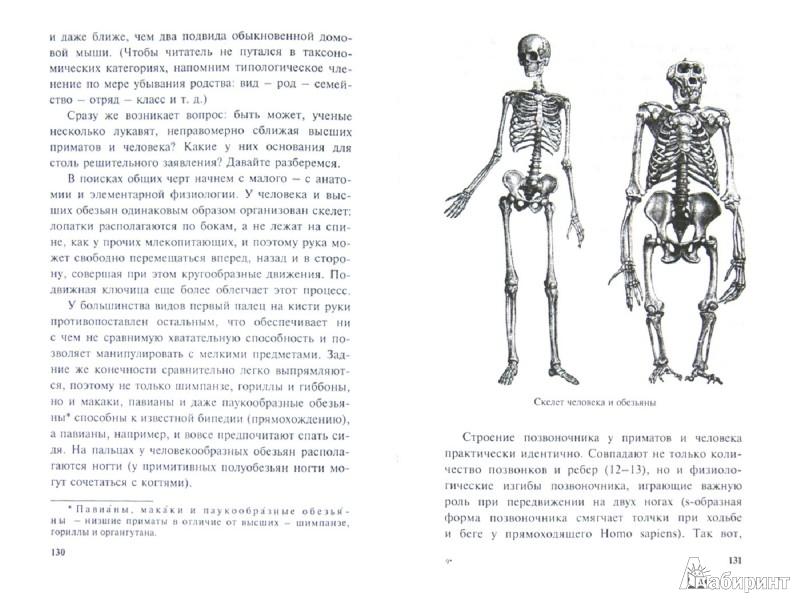 Иллюстрация 1 из 8 для Удивительная генетика - Вадим Левитин | Лабиринт - книги. Источник: Лабиринт