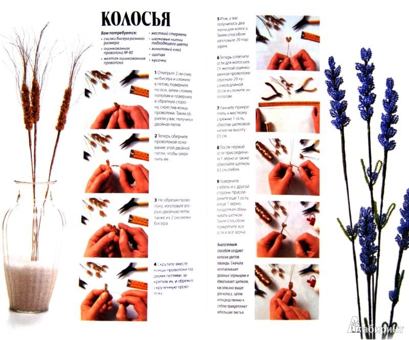 Иллюстрация 1 из 7 для Роскошные цветы из бисера. Ускоренный курс - Донателла Чиотти | Лабиринт - книги. Источник: Лабиринт