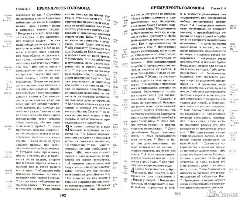 Иллюстрация 1 из 18 для Библия. Книги Священного Писания Ветхого и Нового Завета с параллельными местами и приложениями | Лабиринт - книги. Источник: Лабиринт