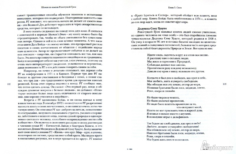 Иллюстрация 1 из 8 для Шаман по имени Рокочущий Гром - Криппнер, Сидиан | Лабиринт - книги. Источник: Лабиринт