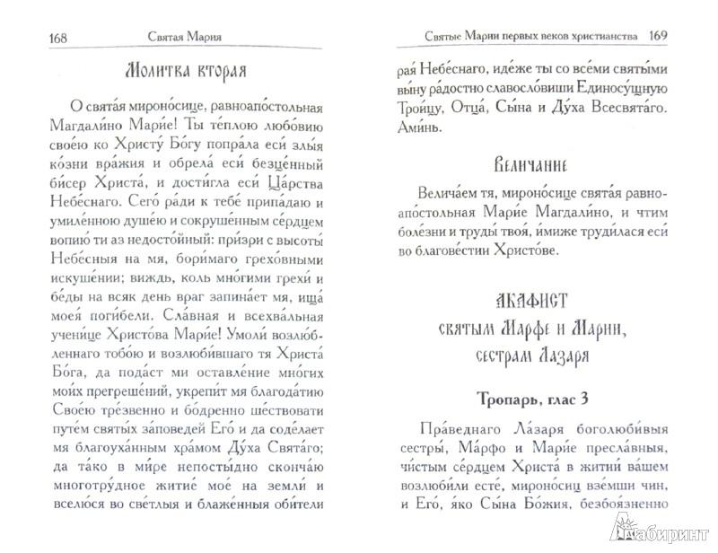 Иллюстрация 1 из 12 для Святая Мария - Л. Филимонова | Лабиринт - книги. Источник: Лабиринт