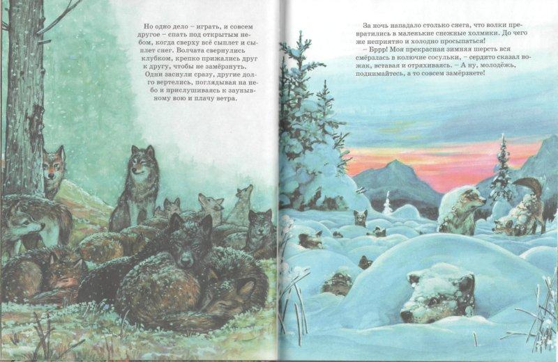 Иллюстрация 1 из 27 для По следам любимых зверят - Мари Дюваль | Лабиринт - книги. Источник: Лабиринт