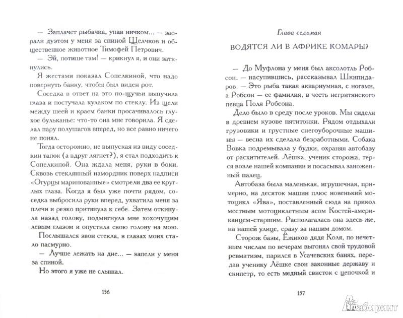 Иллюстрация 1 из 30 для Порох непромокаемый. Сказки города Питера - Александр Етоев   Лабиринт - книги. Источник: Лабиринт