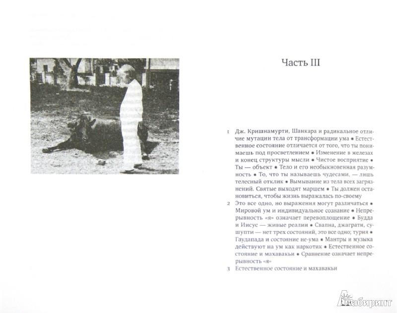 Иллюстрация 1 из 15 для Биология просветления - У. Кришнамурти | Лабиринт - книги. Источник: Лабиринт