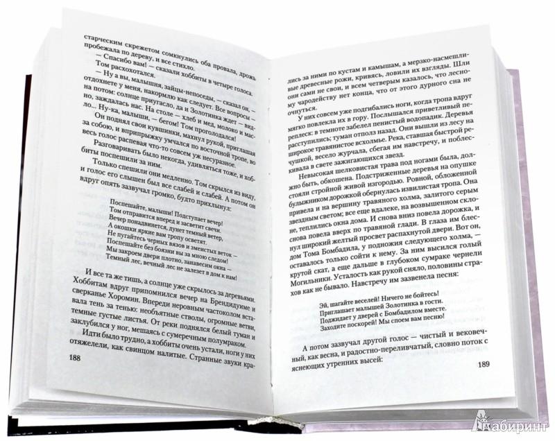 Иллюстрация 1 из 31 для Властелин Колец. Хранители Кольца - Толкин Джон Рональд Руэл | Лабиринт - книги. Источник: Лабиринт