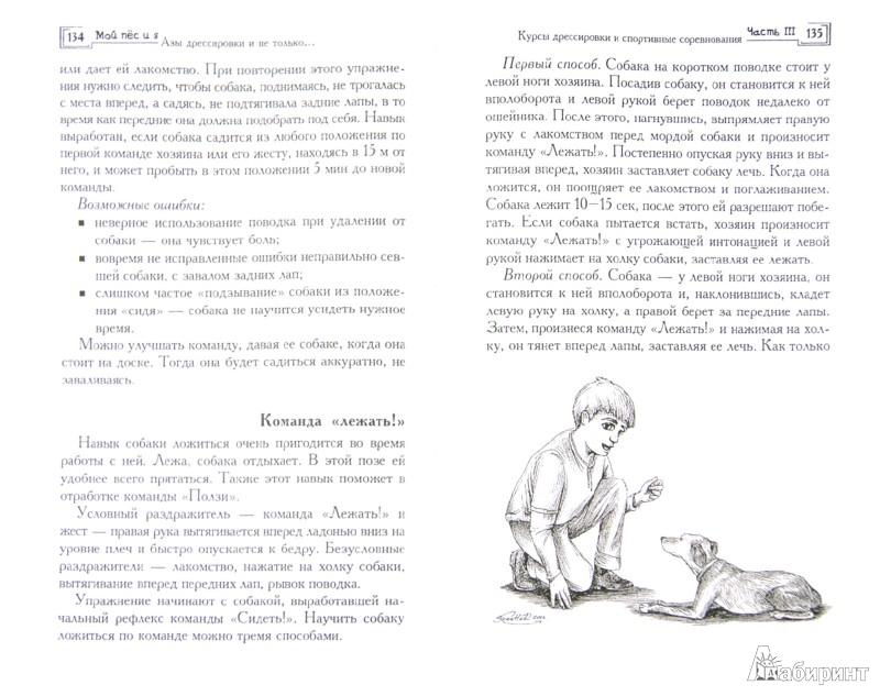 Иллюстрация 1 из 19 для Мой пес и я: азы дрессировки и не только... - Владимир Круковер | Лабиринт - книги. Источник: Лабиринт