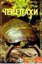 Сергеенко Юлия Сергеевна Черепахи