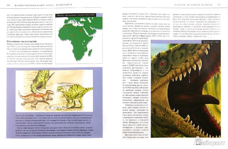 Иллюстрация 1 из 4 для Динозавры. Все самые грандиозные виды древнейших животных. Иллюстрированный атлас - Паула Хаммонд | Лабиринт - книги. Источник: Лабиринт