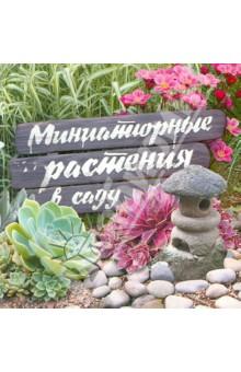 Миниатюрные растения в саду алдохина т красиво цветущие растения