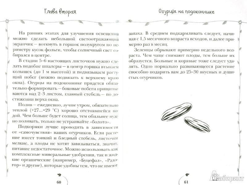 Иллюстрация 1 из 7 для Огурцы. Всегда с отличным урожаем - Татьяна Князева   Лабиринт - книги. Источник: Лабиринт