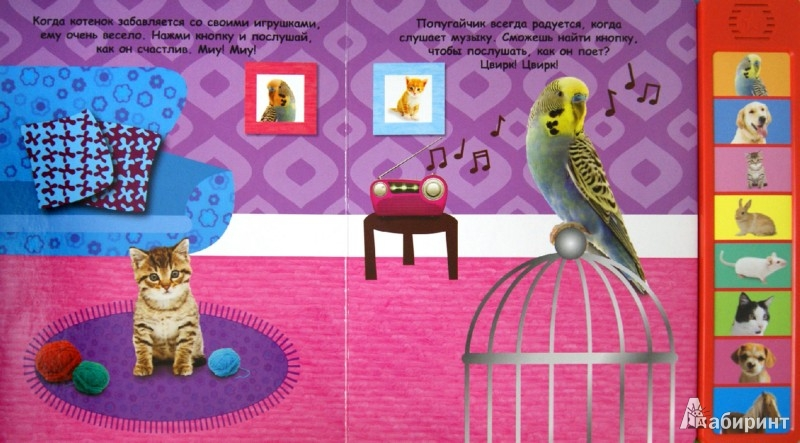 Иллюстрация 1 из 7 для Первые животные | Лабиринт - книги. Источник: Лабиринт