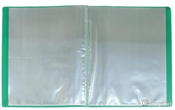 Иллюстрация 1 из 2 для Папка A4 с 30 вкладышами, зеленая (DB30AB-03)   Лабиринт - канцтовы. Источник: Лабиринт
