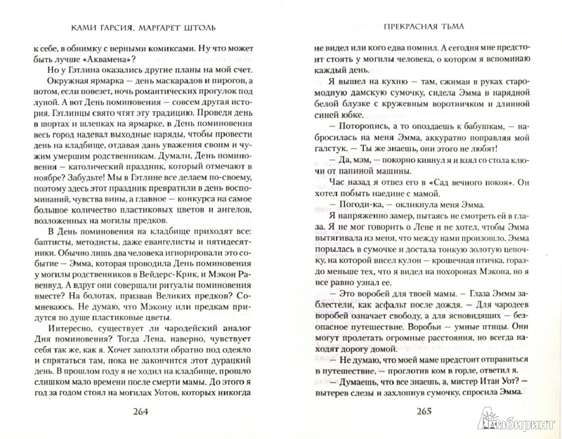 Иллюстрация 1 из 7 для Прекрасная тьма - Гарсия, Штоль | Лабиринт - книги. Источник: Лабиринт