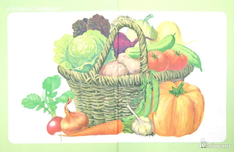 Иллюстрация 1 из 16 для Тематический словарь в картинках: Мир растений и грибов: Фрукты. Овощи | Лабиринт - книги. Источник: Лабиринт