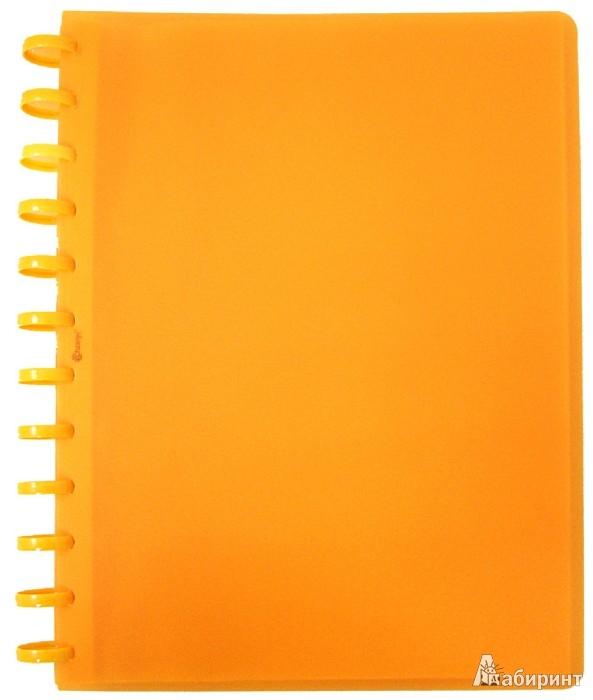 Иллюстрация 1 из 2 для Папка с 40 файлами на кольцах А4 оранжева (CY40MG-О) | Лабиринт - канцтовы. Источник: Лабиринт