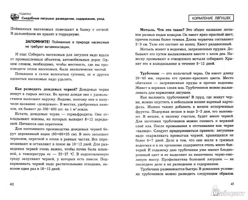Иллюстрация 1 из 6 для Съедобные лягушки: разведение, содержание, уход - Юрий Седов | Лабиринт - книги. Источник: Лабиринт