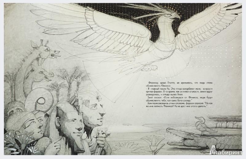 Иллюстрация 1 из 50 для Феникс. Народная легенда | Лабиринт - книги. Источник: Лабиринт