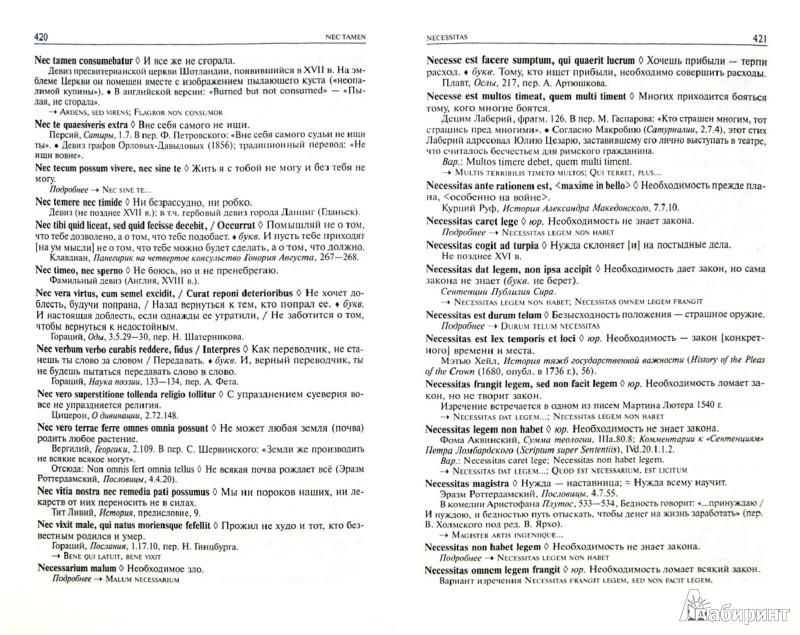 Иллюстрация 1 из 22 для Большой словарь латинских цитат и выражений - Душенко, Багриновский   Лабиринт - книги. Источник: Лабиринт