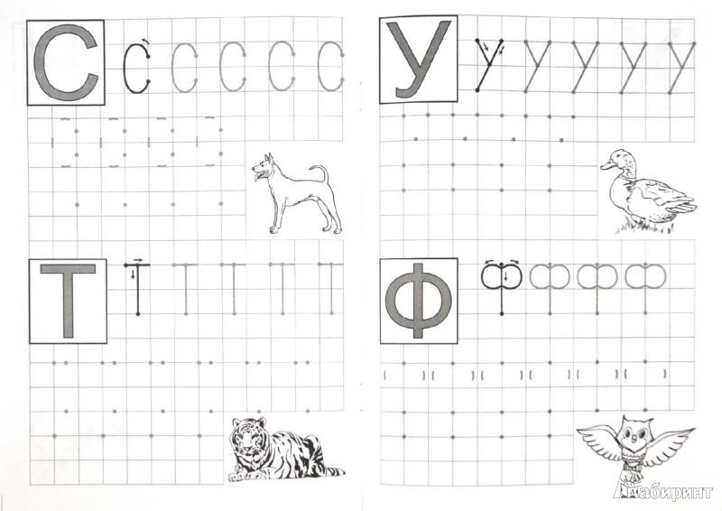 Иллюстрация 1 из 12 для Буквы по клеточкам - Марина Георгиева   Лабиринт - книги. Источник: Лабиринт
