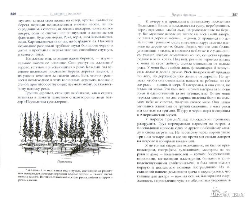 Иллюстрация 1 из 36 для Собрание сочинений в 4-х томах - Эрнест Сетон-Томпсон | Лабиринт - книги. Источник: Лабиринт