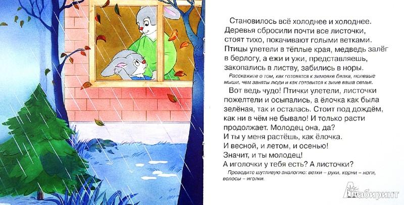 Иллюстрация 1 из 11 для Зайкина ёлочка - Сергей Савушкин | Лабиринт - книги. Источник: Лабиринт