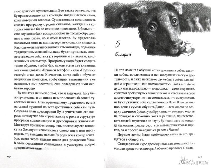 Иллюстрация 1 из 6 для Пес по имени Бу - Лиза Эдвардс | Лабиринт - книги. Источник: Лабиринт