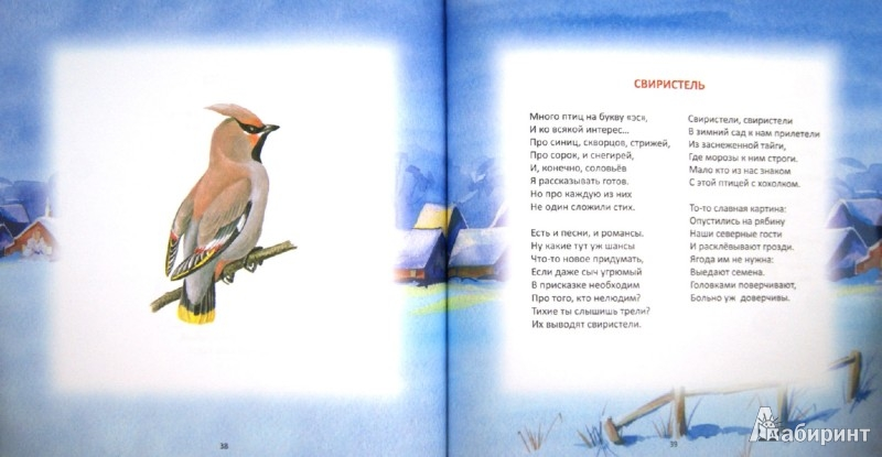 Иллюстрация 1 из 31 для Птичий  алфавит. Стихотворения - Леонид Круглов | Лабиринт - книги. Источник: Лабиринт
