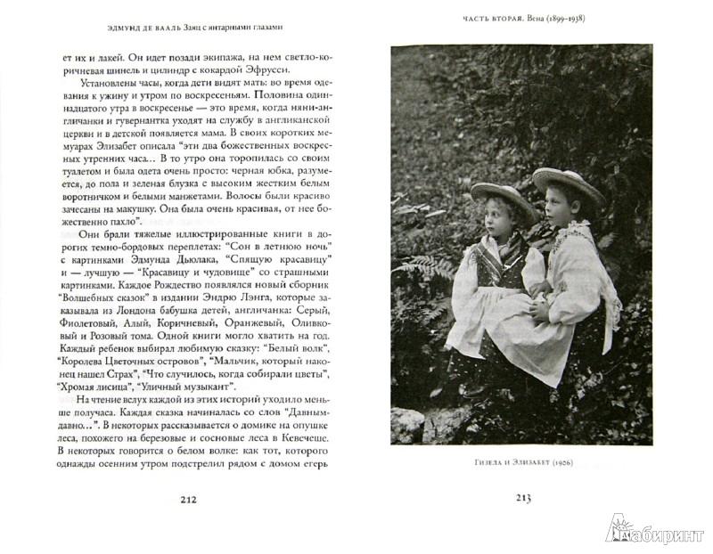Иллюстрация 1 из 9 для Заяц с янтарными глазами: скрытое наследие - Эдмунд Вааль | Лабиринт - книги. Источник: Лабиринт