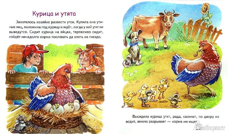 Иллюстрация 1 из 10 для Лиса Патрикеевна - Константин Ушинский   Лабиринт - книги. Источник: Лабиринт