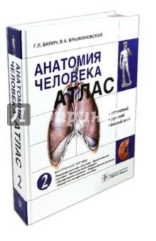 Атлас анатомии человека. В 3-х томах. Том 2 анна спектор большой иллюстрированный атлас анатомии человека