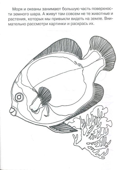 Иллюстрация 1 из 4 для Раскрась и узнаешь морских обитателей | Лабиринт - книги. Источник: Лабиринт
