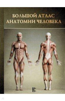 Большой атлас анатомии человека большой атлас анатомии человека