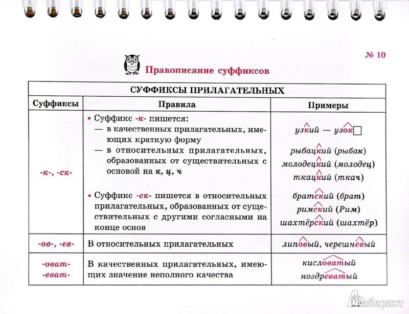 Иллюстрация 1 из 22 для Русский язык. Вся орфография в таблицах и схемах - Ольга Ушакова | Лабиринт - книги. Источник: Лабиринт